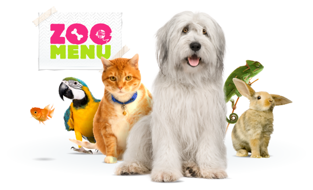 Online shop for pets