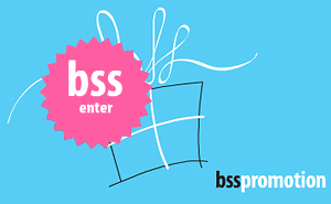 Web design and site development for BSS Promotion