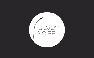 Logo design and corporate materials for Silver Noise